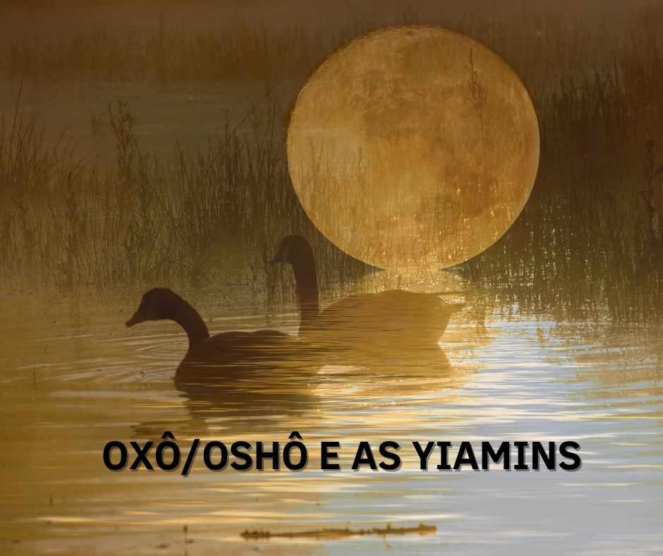 OXÔ/OSHÔ E AS YIAMINS, RECEBEM CASAL DE GANSO.